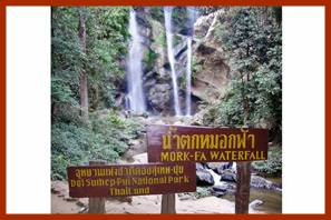 Mork Fa Waterfall - Doi Suthep Plu National Park