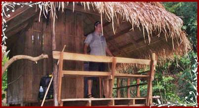 Jungle bamboo hut