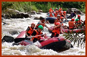 Elephat trekking and white water rafting